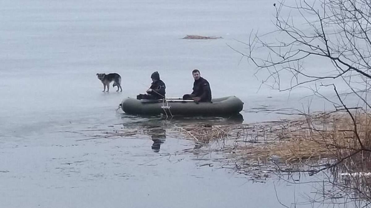 Собака на Харьковщине неделю провела на льду и чуть не утонула
