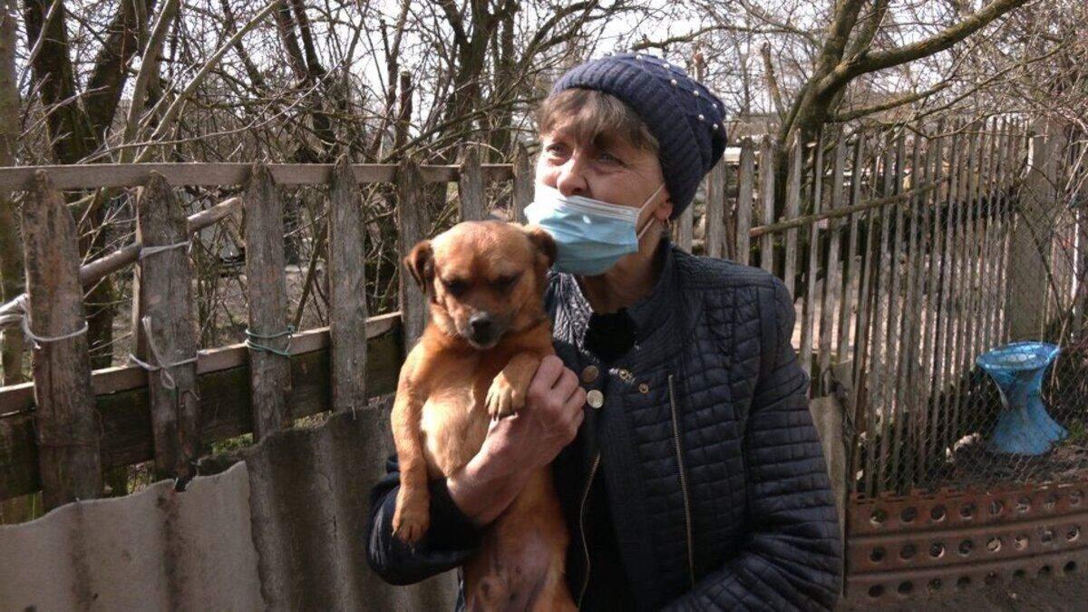 Семья Кот спасла полсотни собак: история супругов с Ровненщины
