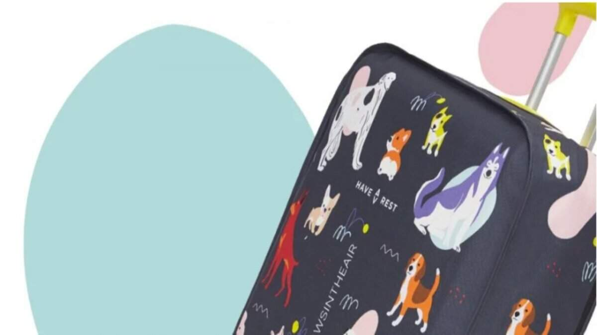 Ідеальні валізи для тих, хто любить собак: як допомогти тваринам, купивши стильний аксесуар
