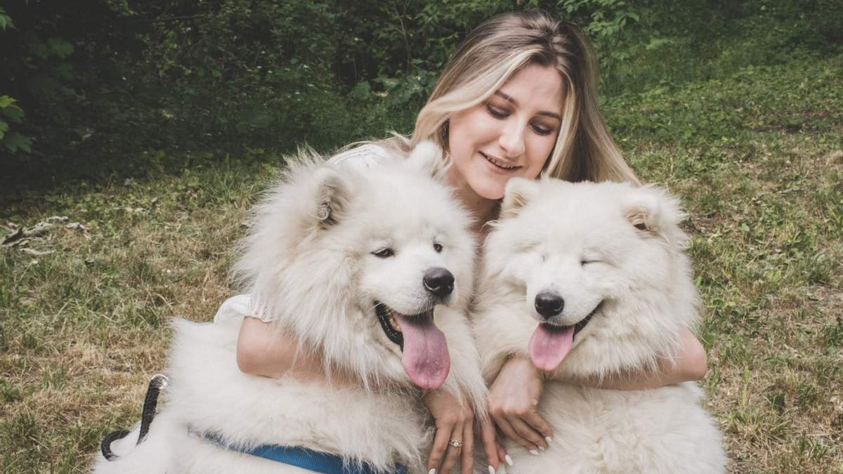Самые добрые породы собак: 10 вариантов с фото