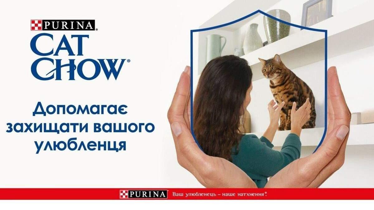 Корм Cat Chow® – природный выбор вашего кота