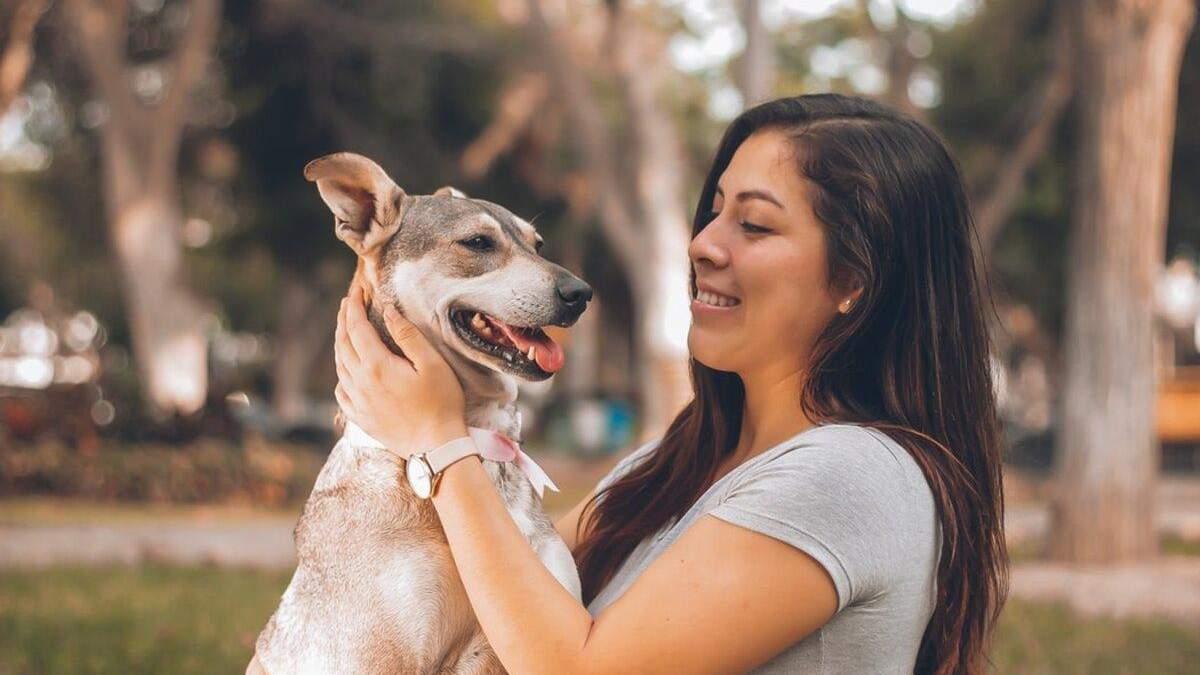 Чи потрібно розмовляти з собакою: поради власникам