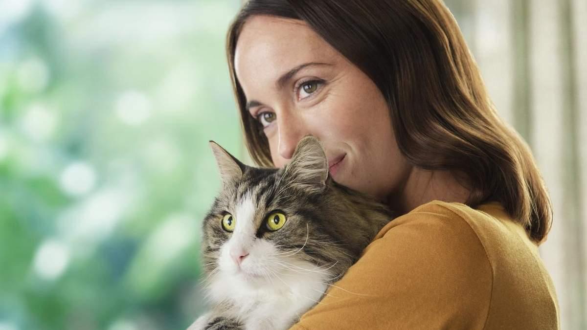 Аллергическая реакция на кошек: новый подход Purina Pro Plan LiveClear