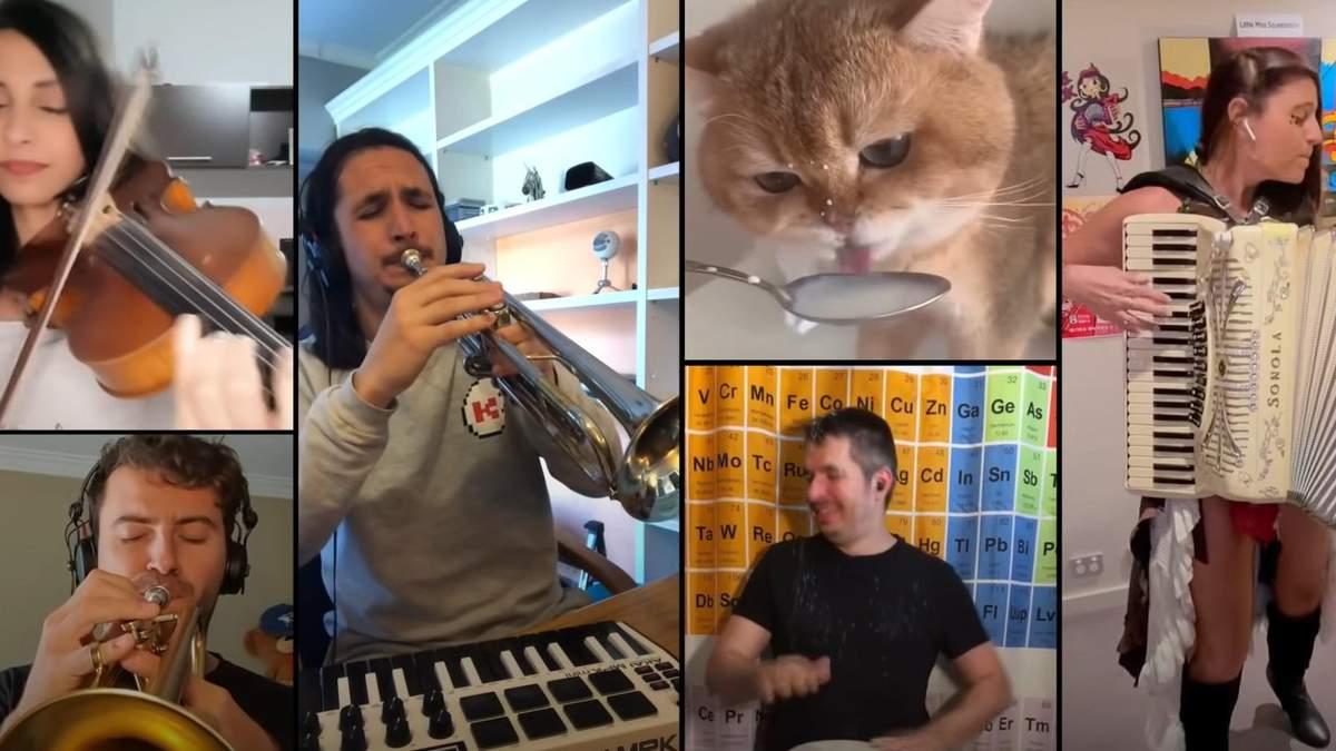 "Музикант реміксує кумедне ""ням-ням"" кота, який п'є молоко"