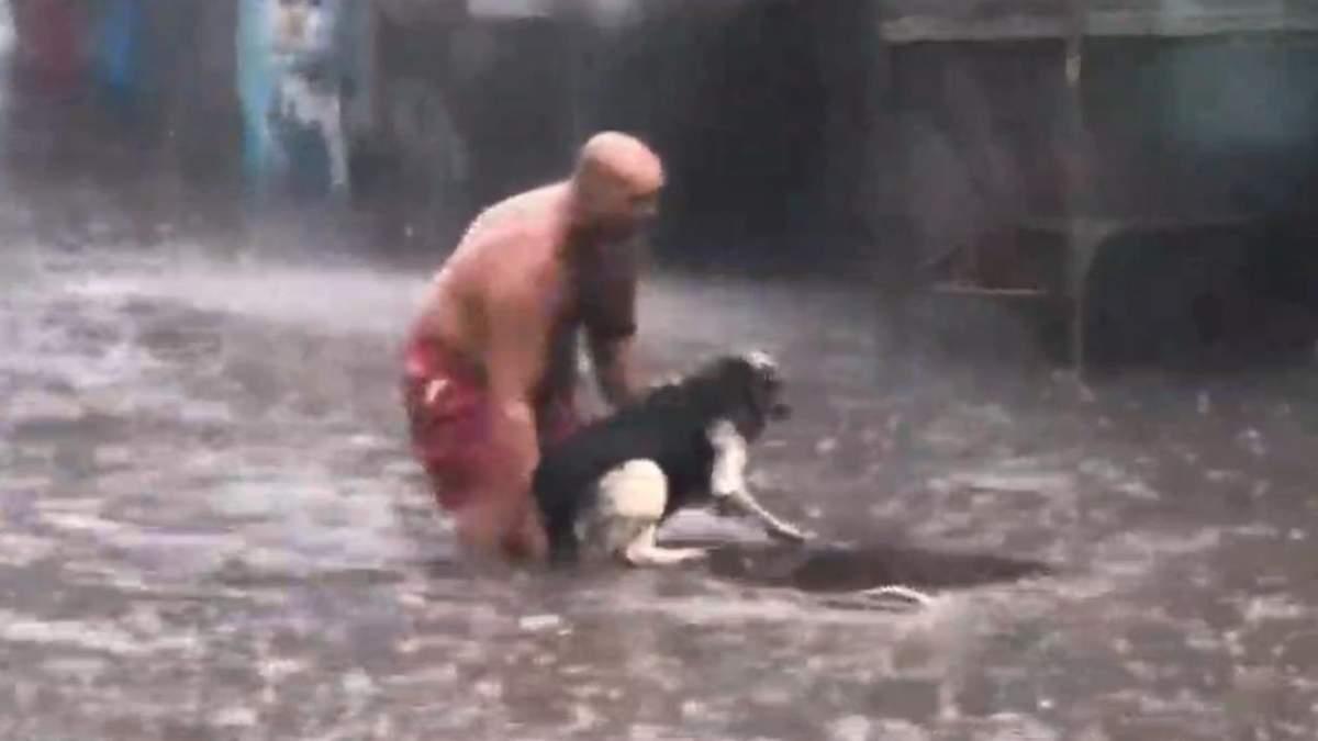 Подробности спасения собаки в Киеве, взорвавшего сеть: видео