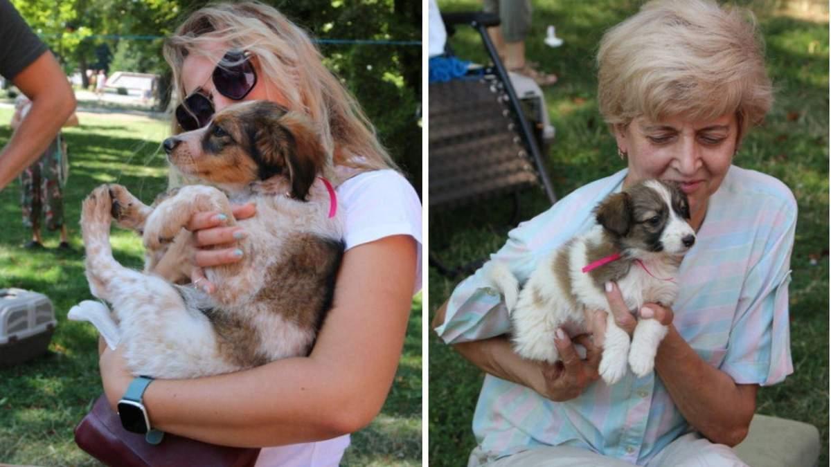 """У центрі Вінниці роздавали тварин: як пройшов традиційний """"Хвіст-фест"""" – яскраві фото - Новини Вінниці - Pets"""