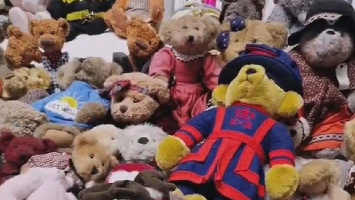Тест на уважність: жінка не могла знайти собаку серед іграшкових ведмедиків - Pets
