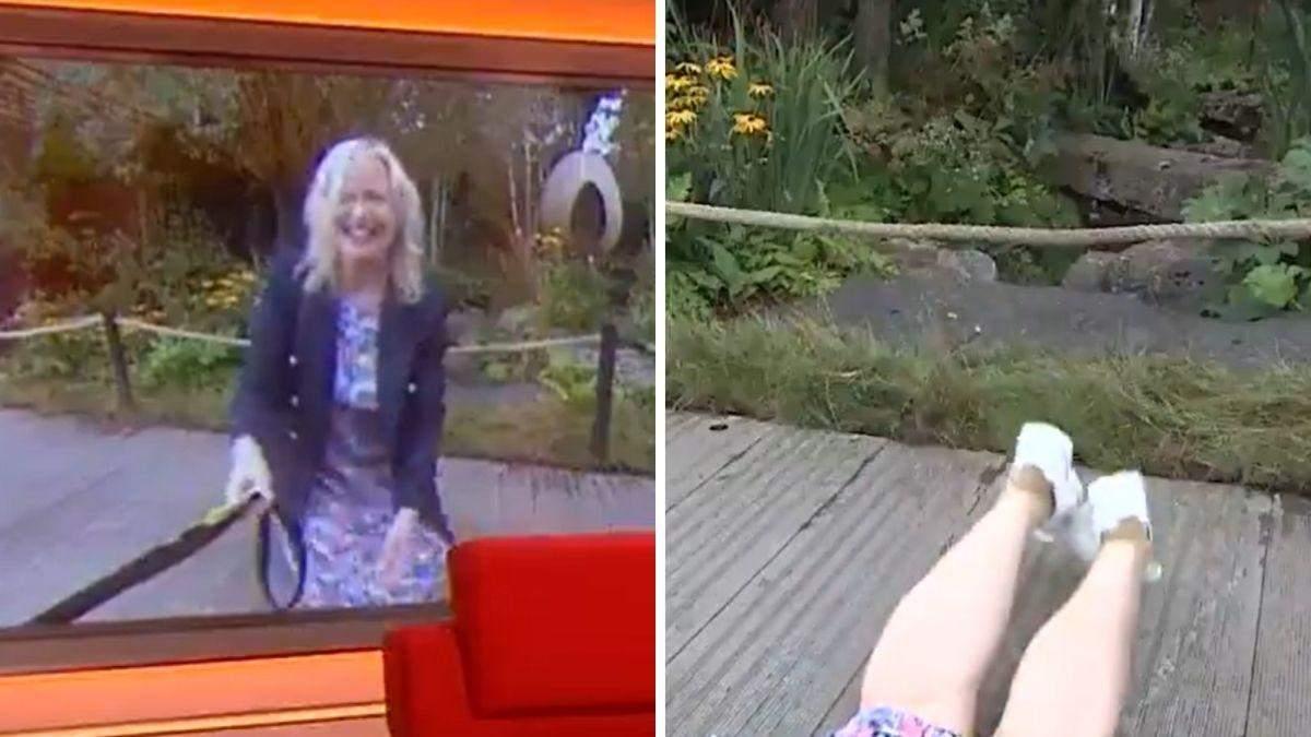 Пес збив ведучу з ніг в прямому ефірі: кумедне відео подивилися тисячі глядачів - Pets
