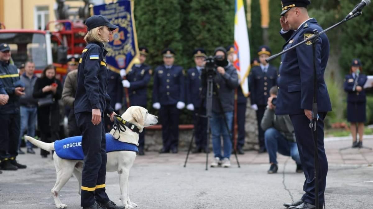 Працював у ДСНС та був кращим на чемпіонатах: унікальну собаку провели на відпочинок - Новини Тернополя - Pets
