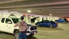 Отказывался идти еще куда-то: почему лось в Колорадо регулярно заходил в гараж и лизал стены