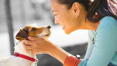 Чим годувати собак малих порід: 3 тижні – видимий результат з Purina ONE®