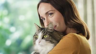 Що викликає алергічну реакцію на котів і як її нейтралізувати: інновація від Purina®