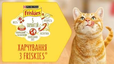 З першого дня і назавжди: 5 гарантій від Friskies® для ваших улюбленців