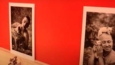 В Кропивницком мужчины снялись в фотосессии со зверушками для помощи приюту