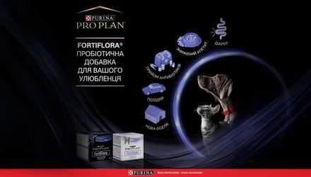 Инновационный продукт на рынке: пробиотическая добавка FortiFlora® для здоровья вашего любимца