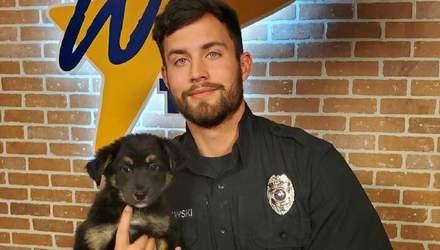 Самый привлекательный американский волонтер работает в приюте для животных