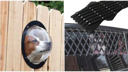 5 супервещей для собаки: от поводка-зонтика и до решетки в авто
