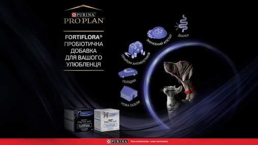 Інноваційний продукт на ринку: пробіотична добавка FortiFlora® для здоров'я вашого улюбленця
