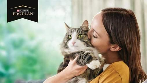 Алергія на шерсть котів: як за допомогою корму для котів можна нейтралізувати* алерген