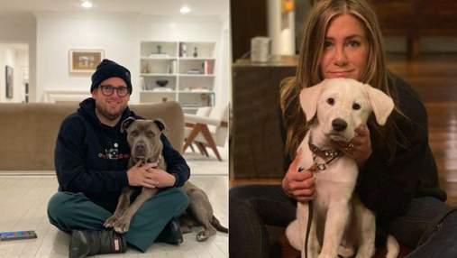 10 известных актеров, которые обожают собак: милые фото из инстаграма
