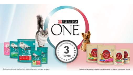Purina ONE® для котів та собак: видимий результат усього за 3 тижні