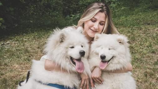 Самые добрые породы собак: ТОП 10 вариантов с фото