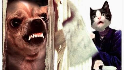 Замість акторів: художник створив кіноафіші популярних фільмів з котами та собаками