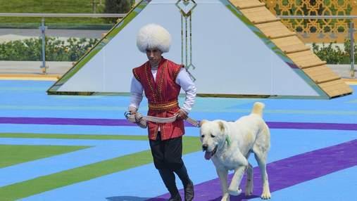 Туркменский алабай: повод для национальной гордости и золотого памятника