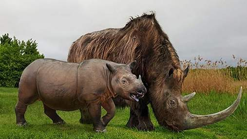 Палеохудожник порівняв зображення сучасних тварин та їхніх вимерлих предків: унікальні фото