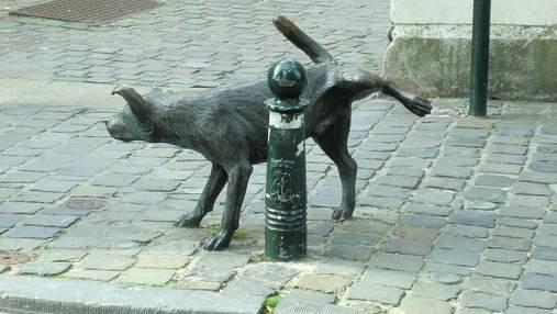 Собака с задранной лапкой: история смешного памятника в Брюсселе
