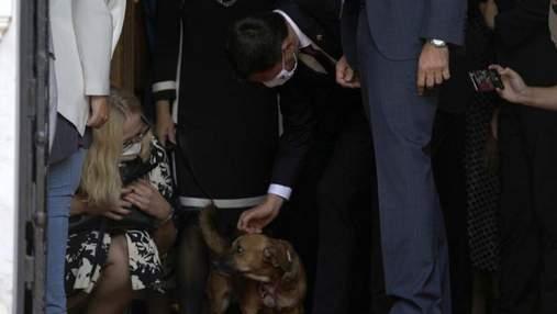 Неслухняний Арахіс: як пес прем'єра Греції перервав пресконференцію
