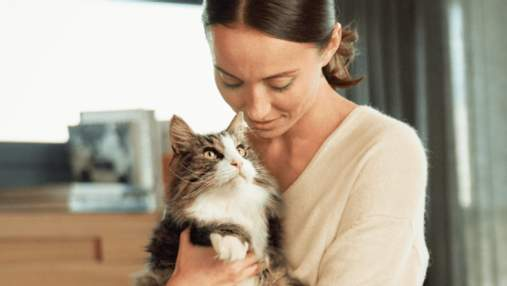 Что поможет побороть аллергическую реакцию на кошек: узнайте другие методы борьбы с аллергией