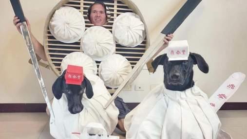 Костюмы для собак на Хэллоуин: какие забавные образы создает хозяин