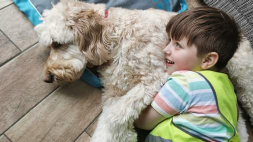 Собака помогла мальчику с аутизмом побороть страх стоматологов: что сделала четырехлапая