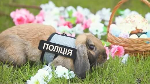 В университете внутренних дел появился кролик-полицейский: пасхальные фото
